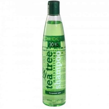 XHC Tea Tree Moisturising Shampoo in Bangladesh
