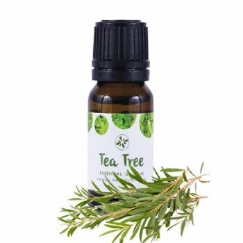 skin cafe tea tree essential oil price in bd