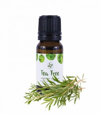skin cafe tea tree essential oil price in bd